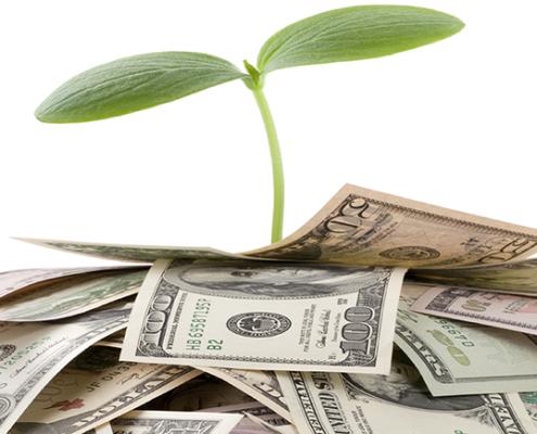 Charlotte Investment Advisors